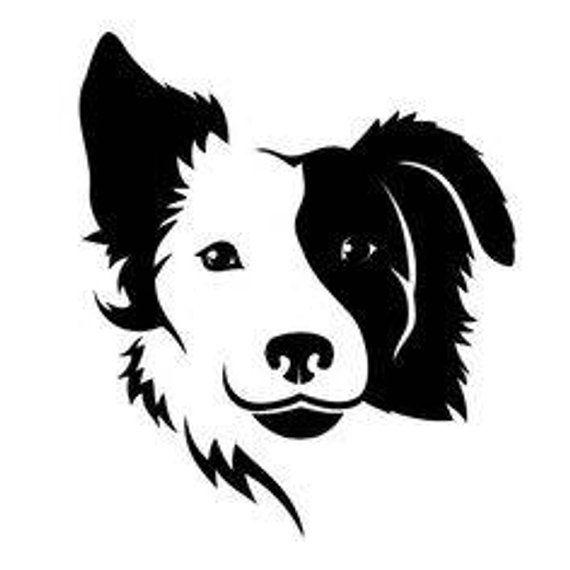 chien BORDER COLLIE STICKER  BRODERIE