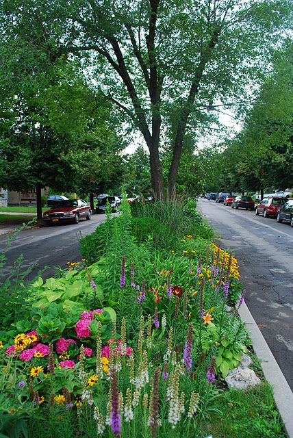 Enjoy Gardening Without The Breaking Your Back With This: 1000+ Ideas About Urban Garden Design On Pinterest