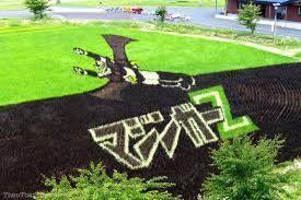 ¿Qué tiene que ver Mazinger Z con un campo de arroz? Descubre el Paddy Art o arte japonés a través de los arrozales de Inakadate.  http://riceworldwide.com/?p=300