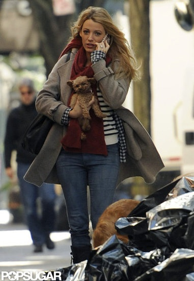 Blake Lively carried her dog Penny on the set of Gossip Girl in NYC