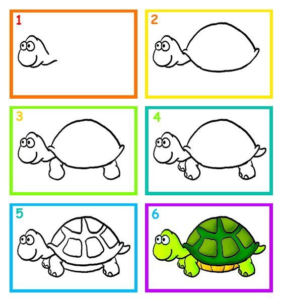 how to draw a turtle for kids
