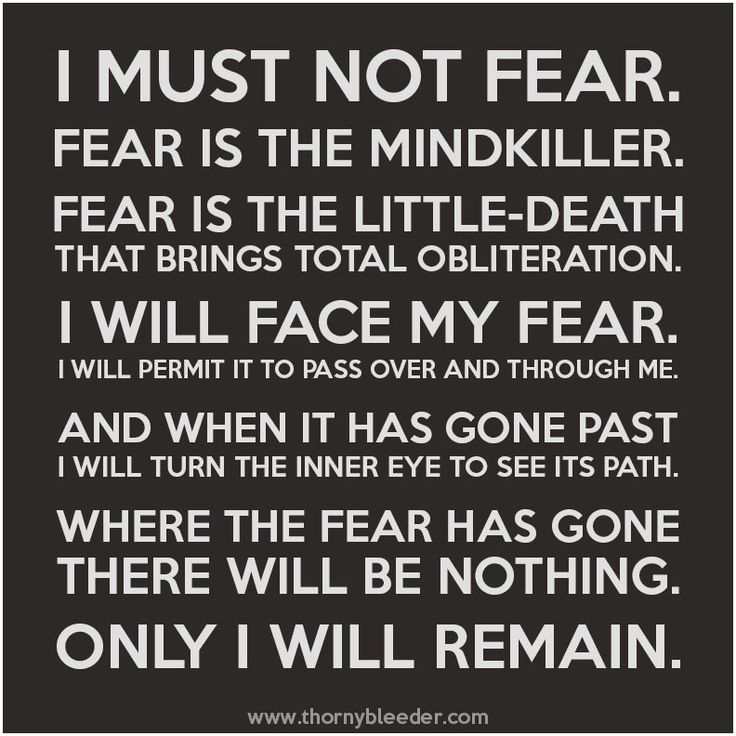 fear is the mindkiller