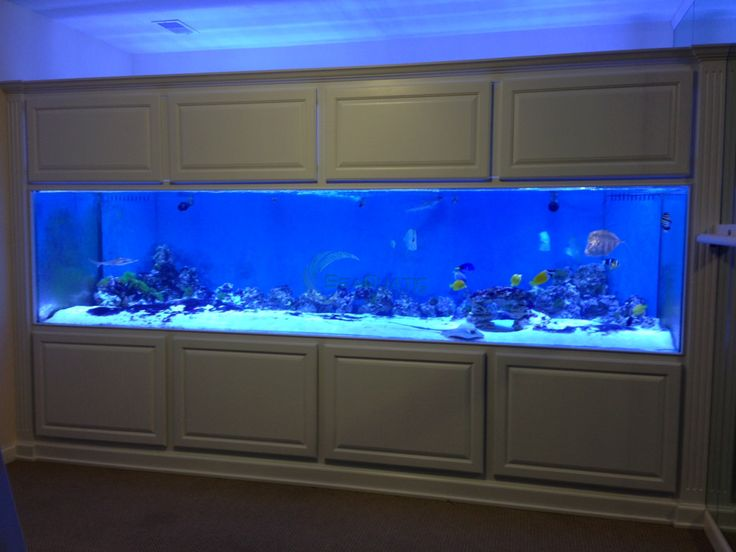 marineland 300 gallon aquarium