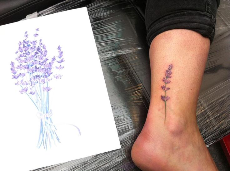 lavender flower tattoo design - Yahoo Search Results