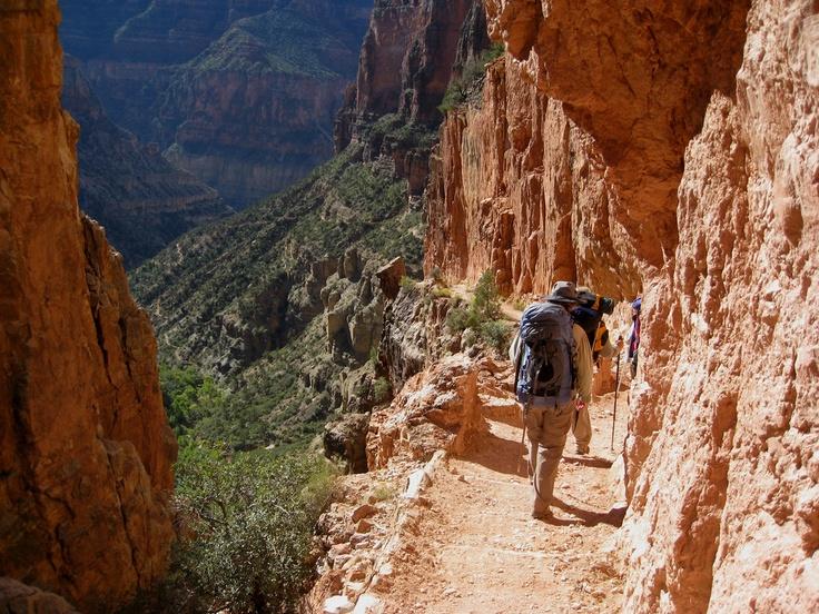 arizonanature:    North Rim, Grand Canyon