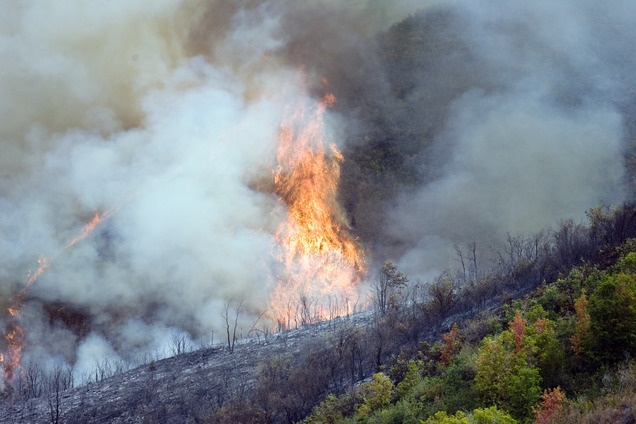 Flames off a ridge off Highway 40 outside of Heber on Aug. 19, 2012.