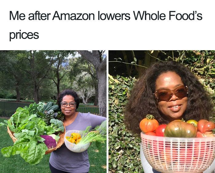 35 Hilarious Food Memes Funny Food Memes Food Memes Food Humor