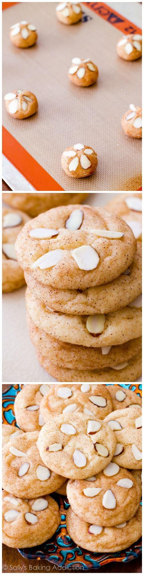 Delicious Cinnamon Sugar Sand Dollar Cookies for the beach!