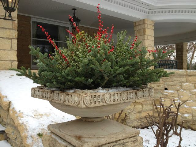 Winter Containers 2013- place greens so they don't cover an interesting rim  of