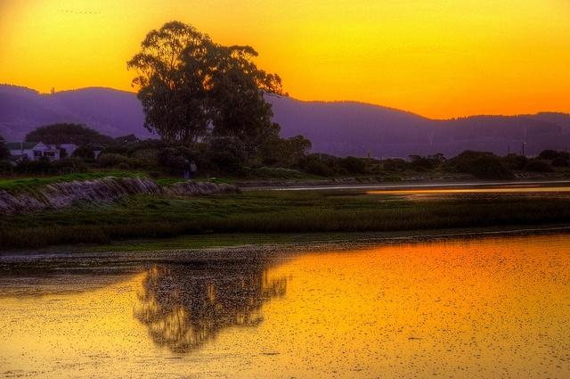 Sunset on the Knysna Estuary, Leisure Isle, Knysna, South Africa