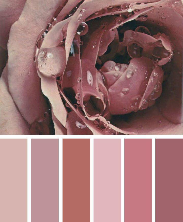 Mauve mood Color Palette,Mauve taupe color inspiration #Mauve #Taupe shades