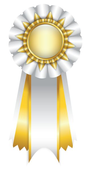 White Rosette Ribbon PNG Clipart Picture