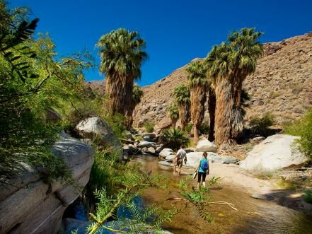 The Saguaro, Indian Canyons, Knott's Soak City Water Park, Desert Adventures, Walk of Stars and Escena Golf Club are just a few fun things to see and do when visiting Palm Springs, CA.