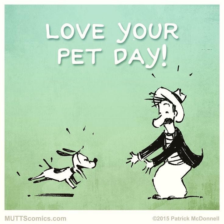 It's national love your pet day!!!!! Spoil those fur babies!!!