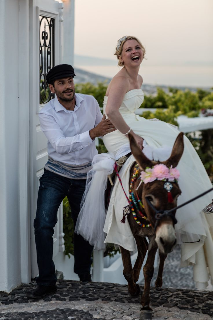 #memories from beautiful people! The #bride and the #groom ride on beautifully decorated donkeys to their #wedding #reception! Let us organize your wedding  #PyrgosRestaurant #santorini #thira #instagreece #greece #ceremony #honeymoon #instawedding #couple #wonderful_places #memories #greek #tradition #travel #traveling #wanderlust #travelgram #instagram #instapic #instadaily #instafollow #follow #followforfollow #staytuned