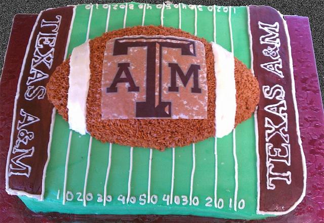 Texas A&M Football cake! I want this to be my next birthday cake!!!