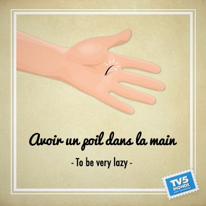 French learning: Avoir un poil dans la main : to be very lazy
