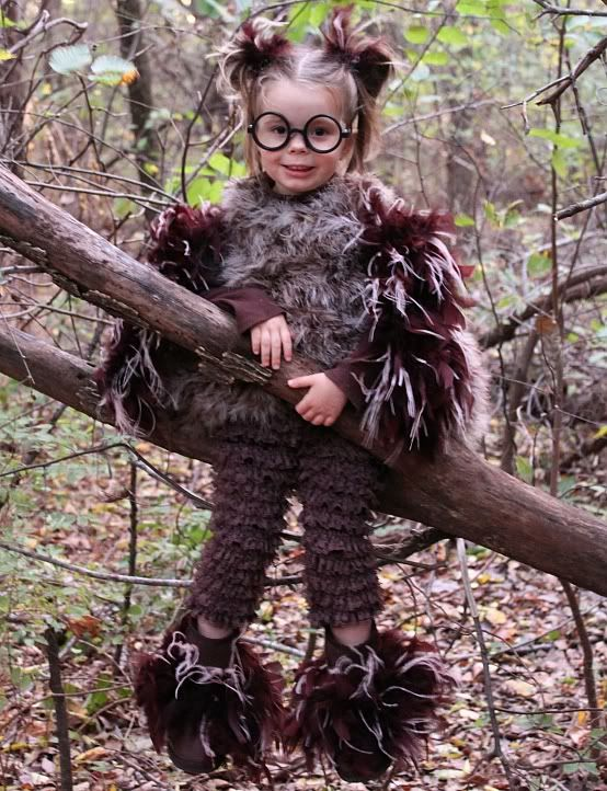 241 best costume images on pinterest carnivals costume ideas and girls age 3 cute glasses idea to add to an owl costume hmmm solutioingenieria Images