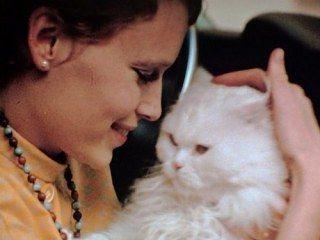 Mia Farrow et son chat persan blanc