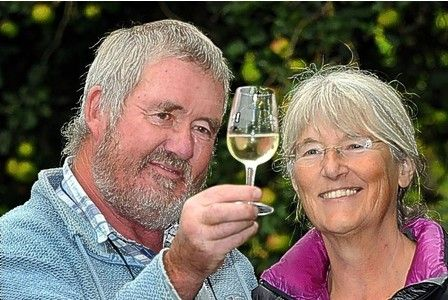 Gathering Somerset's grapes for 25 years