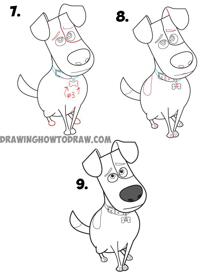 How to Draw Max from The Secret Life of Pets : Easy Step by Step Drawing Tutorial