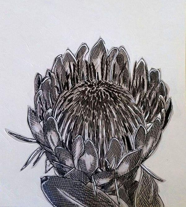 Hermien Van Der Merwe; Title: Fynbos:  Gesnoei (Pruned) Medium: Pen-and-Ink drawing on paper with oil paint background Size:200 x 200mm