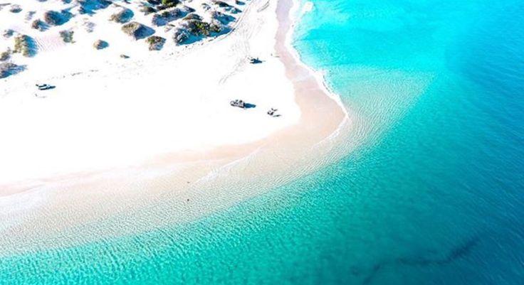 Lucky Bay #kalbarri #westernaustralia #beachlife www.kalbarri.org.au