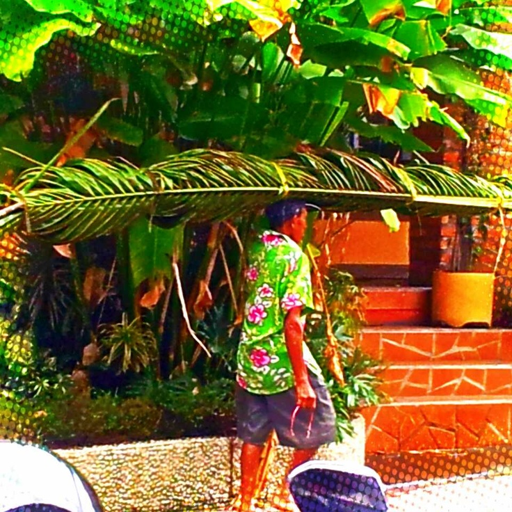 i think this moment was how perfectly his gorgeous shirt went with the palm fronds he was carrying...there were at least 3 of us visitors to Bali who pulled out our cameras for this moment...x