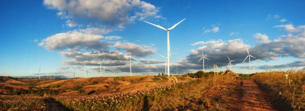 panoramic views of the wind farm