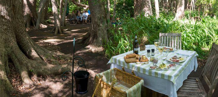 Picnic At Vergelegen - Vergelegen Estate - Somerset West, Winelands, South Africa