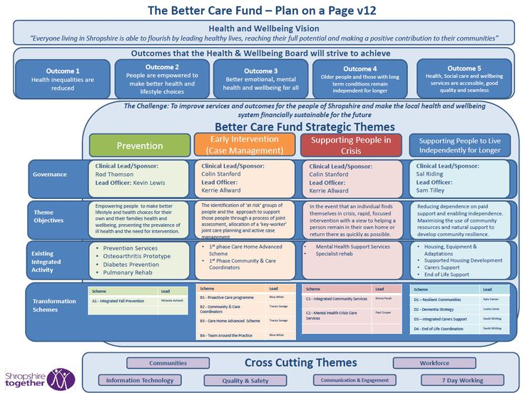 BCF Plan on a Page