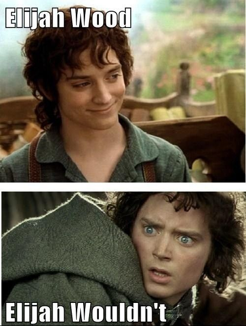 this is like one of my favorite LOTR memes
