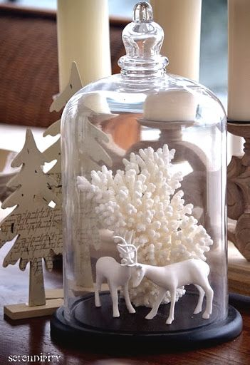 White Christmas scene in a cloche. White Coral Bring the Sea and a Snowy Feel to Holiday Decor.