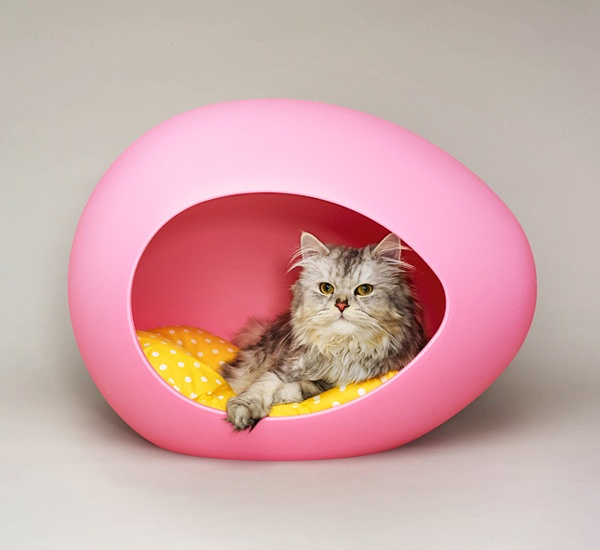 see that there: today i like ... modern pet accessories