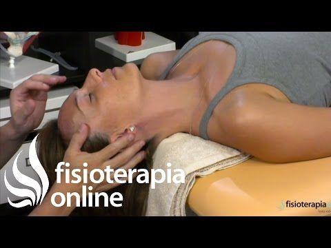 Estiramientos cervicales - Músculos escalenos. | Fisioterapia Online
