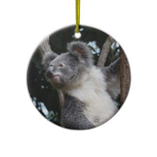 merry koala-mas christmas tree ornament