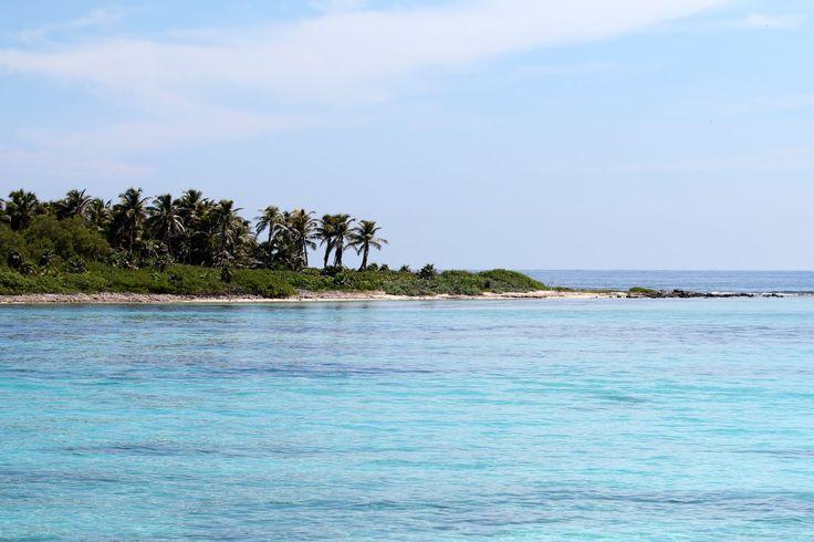 Cos'è Isla Contoy Isla Contoy è un'isola che dista circa 30km da Isla Mujeres ed è parte del suo municipio. Dichiarata parco nazionale nel 1998 ma protetta dal governo messicano già dal…