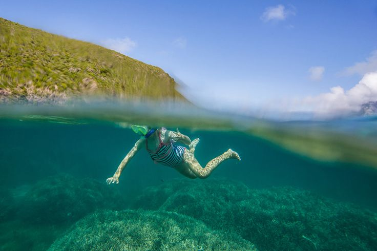 Elsie's first snorkel near the wreck of the MV Favourite   Lord Howe Island