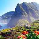 Vacanta in bijuteria Portugaliei, Madeira! 219 EUR (zboruri si 7 nopti de cazare) • Aventurescu