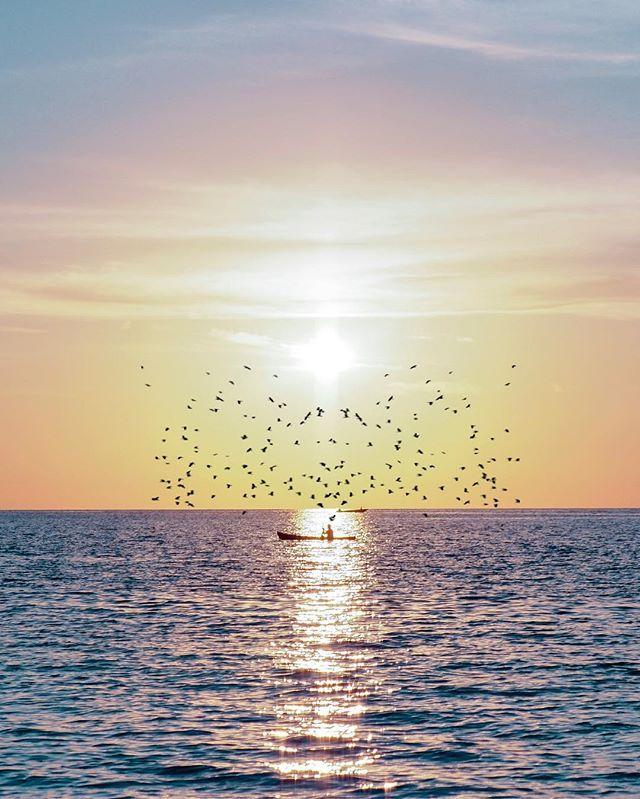 Arti Mimpi Berenang Di Laut : mimpi, berenang, Mimpi, Berenang, Berita, Terkini