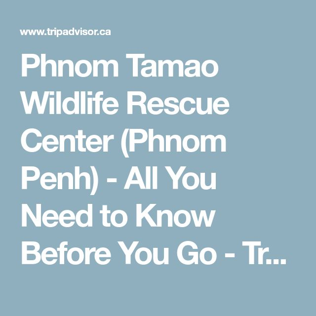 Phnom Tamao Wildlife Rescue Center (Phnom Penh) - All You Need to Know Before You Go - TripAdvisor