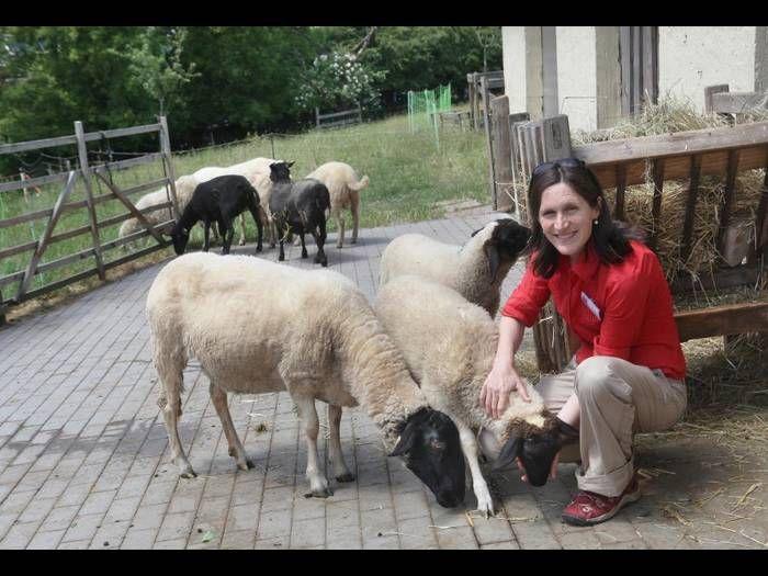 Bauernhofleiterin Katharina Thiel mit einigen Rhönschafen. Sie ist von Anfang an dabei.Foto: Karl-Heinz Bärtl