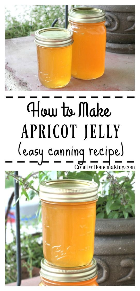 Apricot Jelly Canning Recipe