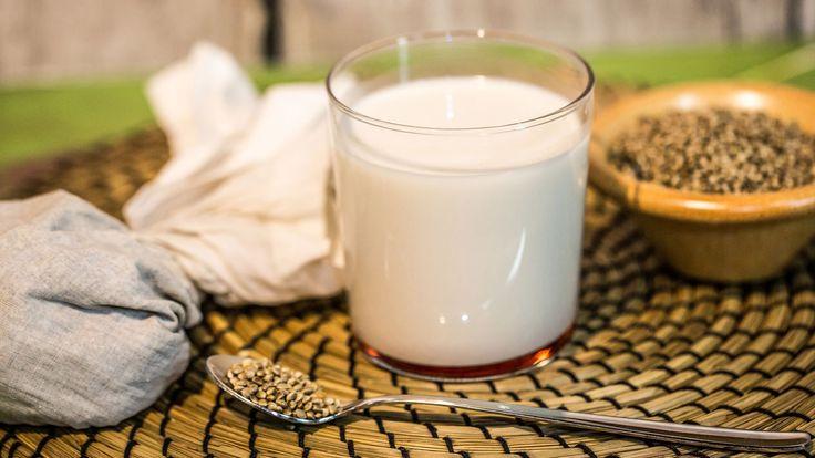 Latte di Canapa (Hemp Milk)