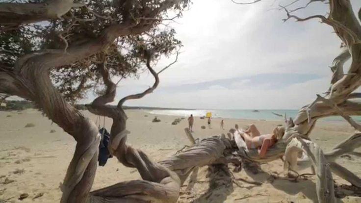 Ονειρεύεστε τις επόμενες διακοπές σας στην Κρήτη; Δεν είστε μόνοι…  Dreaming about your next holidays in Crete? You are not alone…