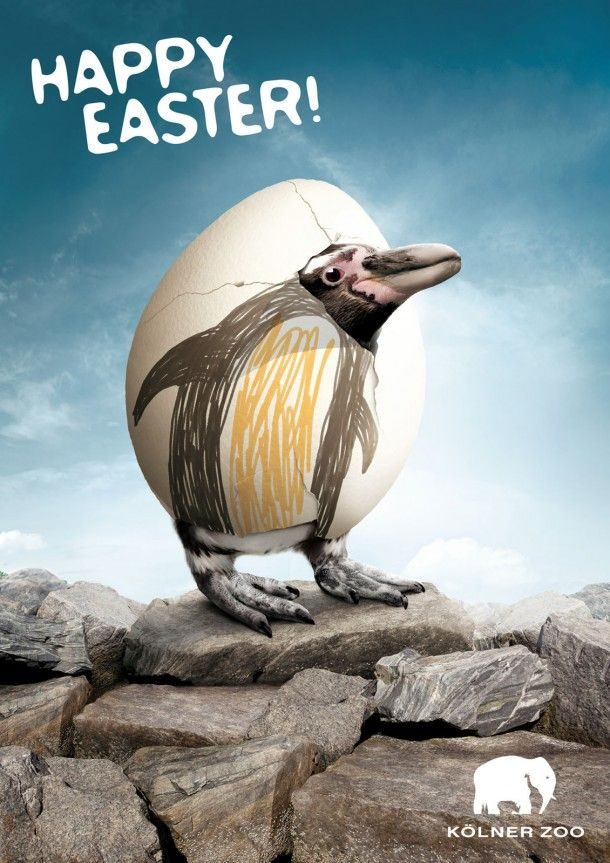 Happy Easter Kölner Zoo #2, 2011