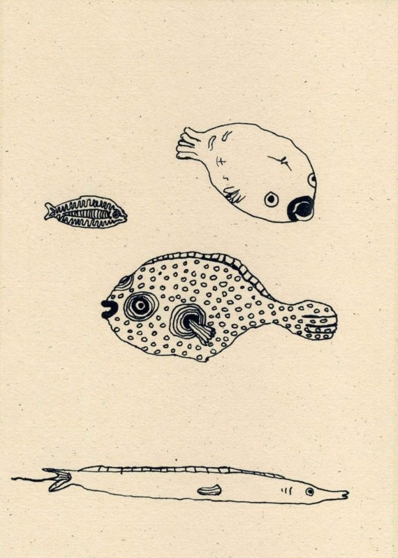 Red Sea Fishes drawing