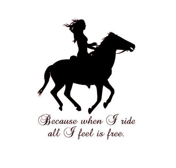 My Horse Is My B.F.F Horse Shoe Shaped Car Magnet