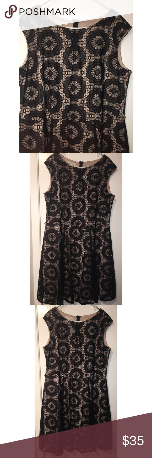 Black & Tan Lace Dress Black and tan lace fit and flare dress. New without tags - never used. Size 20W. The material is 100% polyester. Dresses Midi