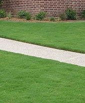 Miraculous Fall Lawn Care Tips